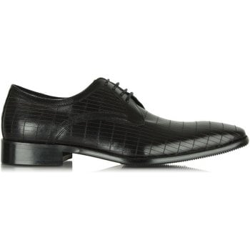 Daniel Black Leather Lytchett Lace Up
