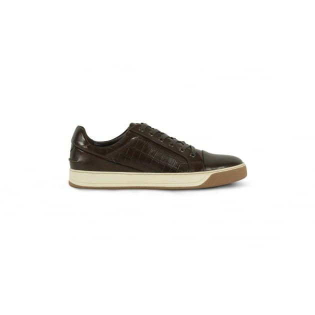 Azor Lazio Casual Lace Shoe - Brown