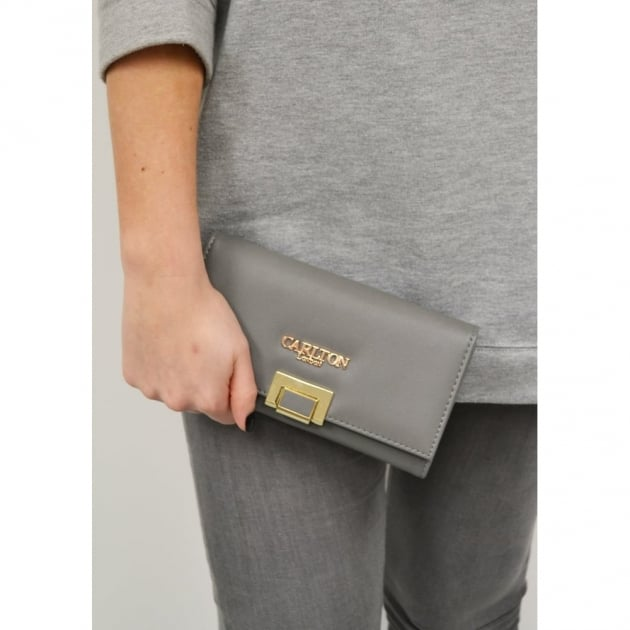 Aloes Clb0029 Grey Purse